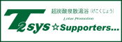 t2sys